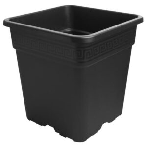 Black Square Pot