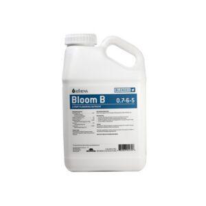 Bloom B Athena